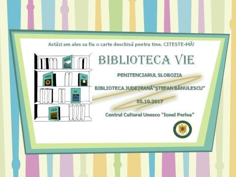 6 bblioteca_vie-1.jpg